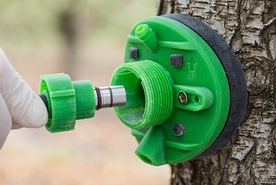 The Saturas SWP sensor is embedded in the trunks of trees or vines.