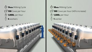Current milking parlor vs. milking parlor with MiRobot